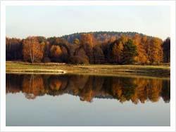 Rybolov na Hrutkovských rybnícich